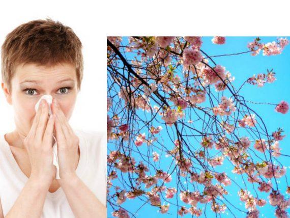 misw-tis-anoiksiatikes-allergies-odhgos-epiviwsis